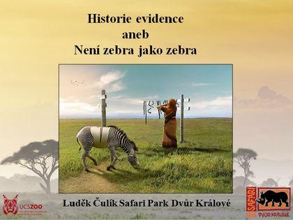Historie evidence aneb není zebra jako zebra.