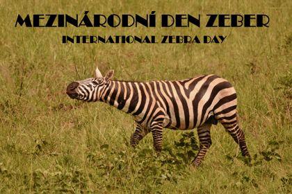Mezinárodní den zeber