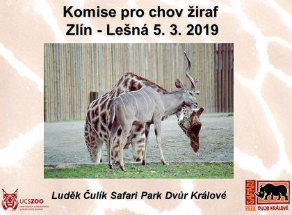 Rekapitulace uplynulého roku v chovu žiraf a okapi v ČR a SR